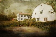 Forsmark (BirgittaSjostedt) Tags: house building landscape scene water river garden old ancient vintage texture paint