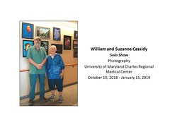"Cassidy Solo at UMCRMC • <a style=""font-size:0.8em;"" href=""https://www.flickr.com/photos/124378531@N04/44449290715/"" target=""_blank"">View on Flickr</a>"