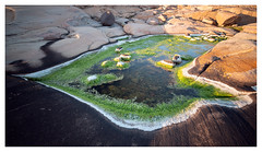 Rock pool (leo.roos) Tags: ramsvikland ramsvikslandet redbohusgranite coast kust rockpool algen algae tijdopname longexposure firstcampsolvik campsite camping bohuslän scherenkust archipelago sweden zweden swedenspring2018 a7rii darosa leoroos sonycarlzeissvariotessarfe1635mmf4zaoss variotessar16354 sel1635z variotessartfe41635 sonycz16354