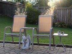 In the garden this morning! (Gillian Floyd Photography) Tags: garden gargoyle chairs steam