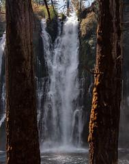 Falls_119972 (gpferd) Tags: water waterfall burney california unitedstates us