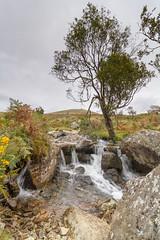 River Lyd, Dartmoor National Park (lee dawe photography) Tags: dartmoor dartmoornationalpark devon brattor riverlyd lydford lydfordgorge river waterfall moorland hills