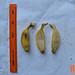 Pisang Kepok_Fruits_other