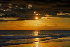 Hoje ao fim do dia/ Algarve (Zéza Lemos) Tags: algarve água portugal pordesol praia puestadelsol vilamoura mar sunset sol sunny natur nuvens natural gaivotas