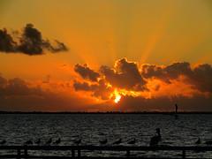 101418am (sunlight_hunt) Tags: texasgulfcoast texas texassunrisesunset texassky matagordabay sunlight sunrisesunset sunriseoverwater palacios