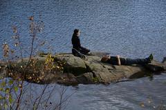 Two kinds of meditation (Rudi Pauwels) Tags: goteborg gothenburg sverige sweden schweden lake lakedelsjon autumn autumnphotowalk photowalk meditating meditation 2018 people funny candid colorstreetphotography zoo tele 18270mm tamron18270mm tamron nikon d7100 nikond7100