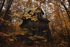 Trick or Treat (SkylerBrown) Tags: abandoned architecture autumn creepy dark fall forest gothic halloween haunted hauntedhouse house leaves newhampshire scary spooky trees woods