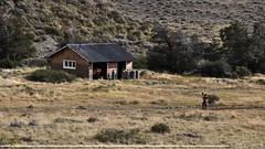 Alma salvaje (Sebas Fonseca) Tags: sebafonseca trekking traveller walking travel argentina santacruz elchalten
