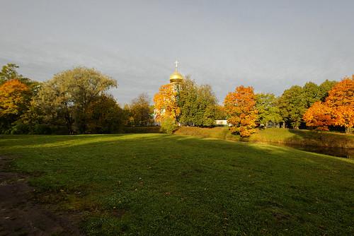 Sunny autumn day under the gray sky.