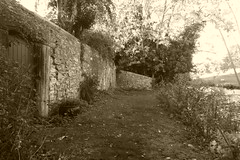 River Wye west bankside, Bakewell    (sepia version) (dave_attrill) Tags: bankside path doors gardens river wye bakewell peakdistrict nationalpark derbyshire september 2018 historic town grass stonewall historicmarkettown sepia