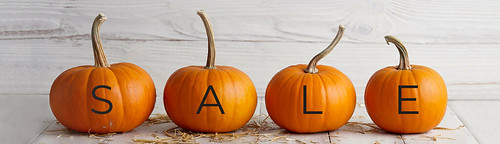 sale pumpkins