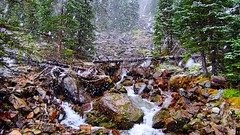 Snow falling on the waterfall (Yuth-in-Asia) Tags: lakeohara yohonationalpark snow white green trees waterfall creek stream river rocks forest