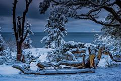 IMGP6698-Edit (jarle.kvam) Tags: winterbeauty winter skagerak
