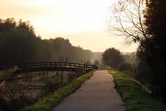 Stekense vaart - Belgium (roland_tempels) Tags: stekensevaart kleinsinaai belgium nature sun bridge water