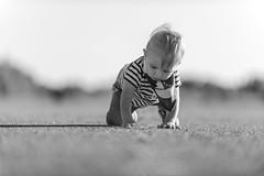 DSC_2177 (damienLGRS) Tags: bébé baby nouveau né new born naissance grossesse photo nikon canon d800 d810 d800e art 70200 f28 landscape golf hour or nature