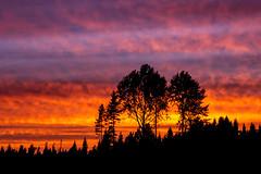 #sunset #auringonlasku #redsky #kangasniemi (villeleppänen) Tags: kangasniemi auringonlasku redsky sunset