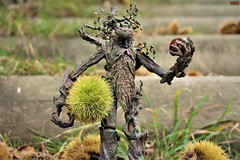 autumn (notatoy) Tags: seasonsflora smileonsaturday lord ring ent toy figure treebeard