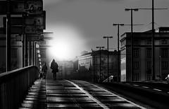 morning fog (heinzkren) Tags: linz schwarzweis blackandwhite bw sw monochrome canon powershot bridge brücke austria sun street streetphotography people city urban candid building donau nibelungenbrücke urfahr lines light donaubrücke sidewalk railings geländer silhouette woman architecture