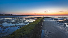 Spear (snomanda) Tags: groyne breakwater spear ebb tide water sea ocean kent england waterscape seascape landscape horizon twilight sunset nautical seaside bay