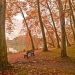 L'automne au parc thumbnail