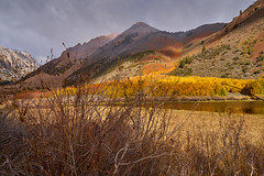 Fall Colors along Bishop Creek (AgarwalArun) Tags: sony a7m2 sonyilce7m2 landscape scenic nature views easternsierra bishopca bishopcreek lakes leaves autumn fallfoliage mountains inyonationalforest