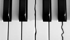 jazz (ELECTROLITE photography) Tags: jazz piano tasten klavier musik music minimal blackandwhite blackwhite bw black white sw schwarzweiss schwarz weiss monochrome einfarbig noiretblanc noirblanc noir blanc electrolitephotography electrolite
