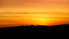 Sonnenuntergang (2) (Obachi) Tags: yemen soqotra socotra lieblingsbilder flickr jemen