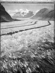 The Glacier And It's Summits (Bastiank80) Tags: glacier aletsch largeformat polaroid55 bastiank