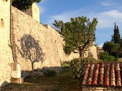 Baum-Schatten - Schatten-Baum (Vachères, Alpes-de-Haute-Provence) ([klauspeter]) Tags: may provence tree baum sun 2018 alpesdehauteprovence france shadow schatten mai