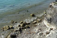 Lake Annecy @ Petit Port @ Annecy-le-Vieux (*_*) Tags: annecylevieux annecy hautesavoie france 74 europe savoie september 2018 summer été petitport lake lakeannecy lacdannecy lac