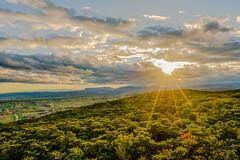 Sun and clouds (a7m2) Tags: austria loweraustria baden wienerbecken hoherlindkogel natur aussichtswarte wald herbst wolken clouds alpen ausläufer schneeberg wandern joggen travel buckligewelt alpenrand