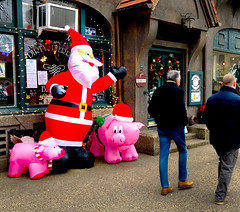"""""""Hey, guys, come on in! -- We're open!"""" (JFGryphon) Tags: restaurantgreeters santa christmaspigs foresthills queens gladtidings piggypudding piggy cupofgoodcheer festive"""
