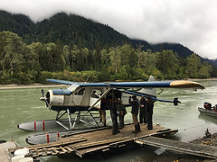 Landed (Fish as art) Tags: travel rainforest britishcolumbiasalmon britishcolumbia canada river adventure airplane floatplane people takuriver forest canadianwilderness alaska