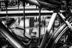 Un canard rêvait du tour de France... / A duck was dreaming about the tour de France (vedebe) Tags: eau canards canal velo ville city rue street urbain urban noiretblanc netb nb bw monochrome animaux oiseaux