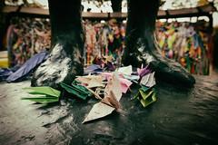 PAPER WINGS 地にひらく翼 (Sign-Z) Tags: nikon d4s 2870mmf28g papercrane hiroshima 広島市 広島県 広島 折り鶴 翼 wing