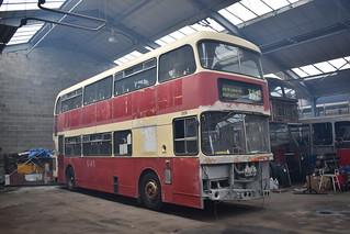129 EJR129W Felling