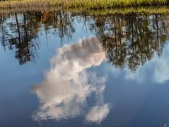 Reflections in the water (raymond_zoller) Tags: russia russland spiegelung eau odraz reflection wasser water woda россия вода одраз отражение