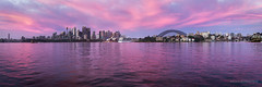 Sydney Surprise (Brian Bornstein) Tags: operahouse water sydneyharbour sunrise sydneyoperahouse sydneyharbourbridge sydneycity brianbornstein sydney cremornepoint cityscape panorama canon6d pastels nsw