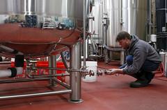 Vogel carbonates the beer.