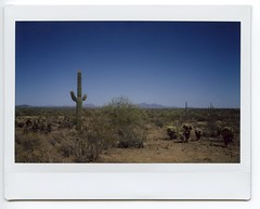 Nevada & Arizona 2018019 (Past Our Means) Tags: fuji fujifilm film filmisnotdead filmphotography filmsnotdead cactus desert travel dirt rocks mountain arizona sky instax instant instaxwide indie instantcamera instantphotography indeifilm instantwide adventures adventure wanderlust analog analogue analouge tree wide 210 myphotography hiking