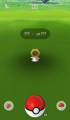 That weird nut Pokémon that showed up in Pokémon Go? It's official now. (UnaWhite) Tags: uncategorized