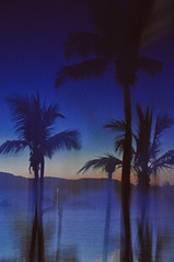 ultraviolet (marin.tomic) Tags: australia australien queensland airliebeach tropical palms abstract sea water sunset night colors silhouette nikon d90 travel traveler holiday vacation summer
