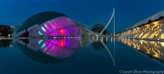 A conference made for an entertaining light show (sarahOphoto) Tags: valència comunidadvalenciana spain es europe light show night low neon modern architecture dark urban city water reflection canon 6d tourist travel arts sciences valencia buildings pool still white blue sky early morning landscape panorama panoramic santiago calatrava lhemisfèric hemisferic el palau de les museu ciències príncipe felipe umbrackle lumbracle opera house museum