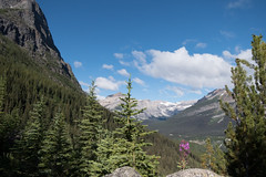 HikingBacklogFull-6 (Bev Wiebe) Tags: alberta hiking july2018 mountains summer twinlakes