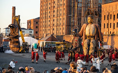 #GiantsLiverpool-2018 (davenewby123) Tags: giantsliverpool2018 liverpool giants cities davenewby2 spectacularshow road people statue building city tower crowd sky giantspectacle liverpoolgiants giantsliverpool tree