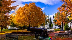 Full color in Bristol Vermont (The Origional New England Photography) Tags: bristolvermont fallfoliage foliage landscapes newengland newenglandfoliage newenglandlandscapes newenglandphotography vermont vermontfoliage vermontlandscape