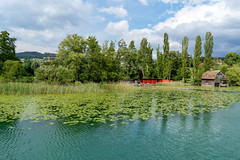 Shore of the Lake Hallwil (Bephep2010) Tags: 2018 7markiii aargau alpha bootshaus frühling hallwilersee ilce7m3schweiz lakehallwil sel28f20 schilf see seengen seerose sony switzerland ufer boatshouse lake reed shore spring waterlily ⍺7iii kantonaargau schweiz ch