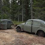VW Käfer thumbnail