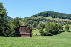 Barn in the Meadows (Bephep2010) Tags: 2018 7markiii alpha châtelsurmontsalvens freiburg fribourg prealps sel24105g scheune schweiz sommer sony switzerland voralpen wald wiese barn forest meadow summer ⍺7iii crésuz kantonfreiburg ch