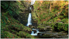 Pistyll Rhaeadr [Explored 04.11.18] (mandysp8) Tags: waterfalls cascades glen forest autumn moss wales uk canon le trees rocks leaves sunrise earlymorning